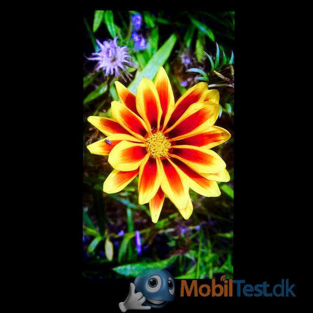 God skærm med flotte farver