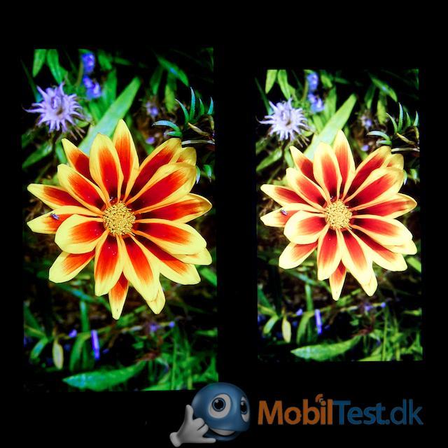 Galaxy S3 og Z10
