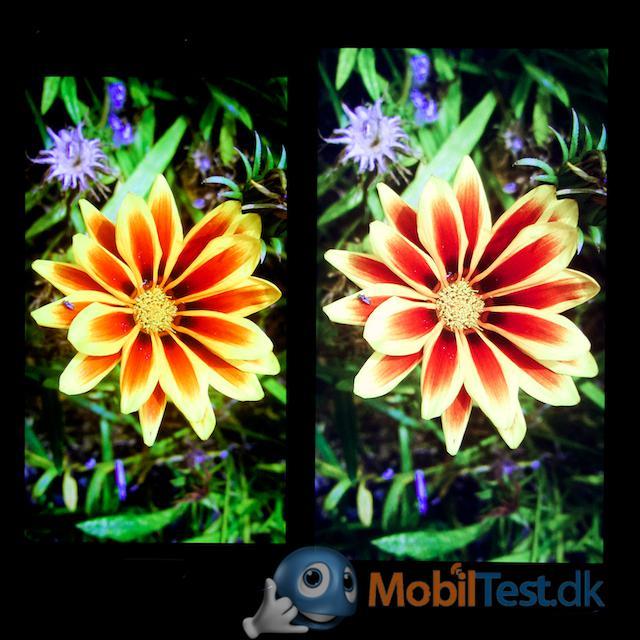 Galaxy S4 og G3 - bemærk kontrast