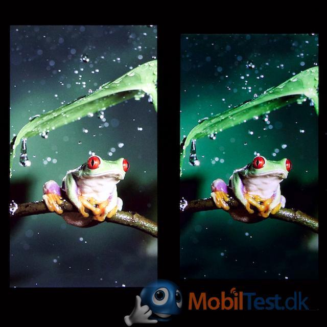 iPhone 6 plus og Xperia Z3+ skærm